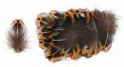 Ring-necked Pheasant Upper Back Feathers (20 Pieces), Orange, White, Black and Iridescent Green