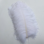 Sowder White Ostrich Feathers 20-22inch(50-55cm) for Home Wedding Decoration Pack of 5pcs