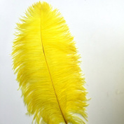 Sowder Yellow Ostrich Feathers 20-22inch(50-55cm) for Home Wedding Decoration Pack of 5pcs