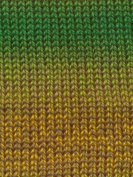 Kaleidoscope Worsted Yarn by Euro Baby (knitting fever) Colour #102 Daffodil Patch