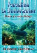 Paradise Is Underwater