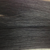Nano Tip 1.0g Remy hair extensions 25 Strands 50cm Jet Black