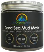 Dead Sea Mud Mask 260ml