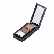 Pro 3 Colours Eyebrow Powder Cosmetic Eye Brow Palette with Eye Brush and Mirror Makeup Kit