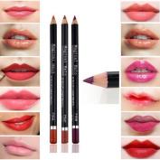 Willtoo 19 Colours Cosmetic Lip Liner Lipliner Pen Pencil Fashion Makeup Waterproof Hot