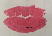 Solid Rose Red Lip Gloss Polish 5ml Lippie Pot Matte Semi-Solid Tint Wand Brush