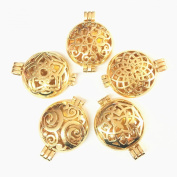 HaXiu 5pcs Mix Style 30mm Golden Essential Oil Aromatherapy Diffuser Pendant Charms Necklace