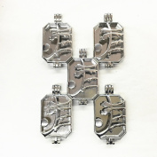 HaXiu 5pcs Flower And Bird Pattern Rectangle(43*23mm) Pendant Charms Necklace Aromatherapy Essential Oil Diffuser