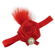 DZT1968(TM)2015 Cute Baby Girls Headwear Feather Rose Flower Hair Accessories