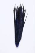 Hgshow 10Pcs feather Products Assorted Natural Pheasant Tails Feathers,About 20-22 inches,50-55cm long Blue