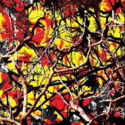 Hydrographic Film - Water Transfer Printing - Hydro Dipping -Forest Blaze - 1 Sq. Metre