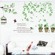 Green Leaves Trees Birds Birdcage Wall Sticker House Decal Removable Living Room Wallpaper Bedroom Kitchen Art Picture PVC Murals Sticks Window Door Decoration + 3D Frog Car Sticker Gift