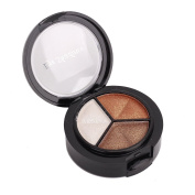 3 Colours Pro Cosmetics Matte Glitter Eyeshadow Eye Shadow Palette Beauty Make-up Set with Brushes