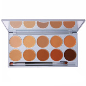 DE'LANCI Professional 10 Colour Cream Concealer Foundation Makeup Palette Set with Mirror Make Up Brush Tool