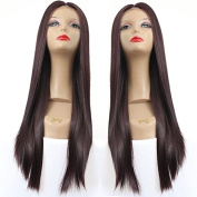 PlatinumHair #4 natural straight wigs synthetic lace front wigs glueless for black women 22-26inchinch