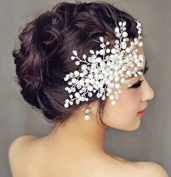 Sunshiny Women's Flower Filigree Simulated Pearl Wedding Bridal Hair Comb Clip
