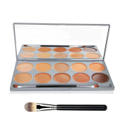 DE'LANCI 10 Colours Pro Cosmetics Cream Concealer Highlighting and Contouring Palette Complete Coverage Camouflage Concealers Contour Make Up Set Kit with Mirror Brush Tool