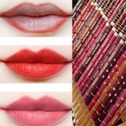 12 Colours Lip Liner Pen Set
