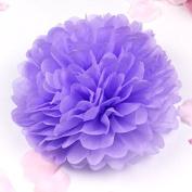 Sorive® 10pcs Tissue Paper Pom-poms Flower Ball Wedding Party Pom Poms Craft Pom Poms Decoration Outdoor Decoration SORIVE0011