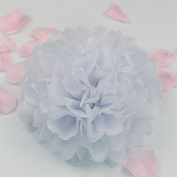 Sorive® 10pcs Tissue Paper Pom-poms Flower Ball Wedding Party Pom Poms Craft Pom Poms Decoration Outdoor Decoration SORIVE0003