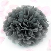 Sorive® 10pcs Tissue Paper Pom-poms Flower Ball Wedding Party Pom Poms Craft Pom Poms Decoration Outdoor Decoration SORIVE0006