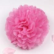 Sorive® 10pcs Tissue Paper Pom-poms Flower Ball Wedding Party Pom Poms Craft Pom Poms Decoration Outdoor Decoration SORIVE0002