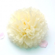 Sorive® 10pcs Tissue Paper Pom-poms Flower Ball Wedding Party Pom Poms Craft Pom Poms Decoration Outdoor Decoration SORIVE0008