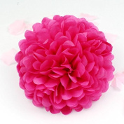Sorive® 10pcs Tissue Paper Pom-poms Flower Ball Wedding Party Pom Poms Craft Pom Poms Decoration Outdoor Decoration SORIVE0014