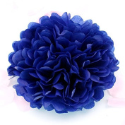 Sorive® 10pcs Tissue Paper Pom-poms Flower Ball Wedding Party Pom Poms Craft Pom Poms Decoration Outdoor Decoration SORIVE0010