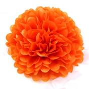 Sorive® 10pcs Tissue Paper Pom-poms Flower Ball Wedding Party Pom Poms Craft Pom Poms Decoration Outdoor Decoration SORIVE0013
