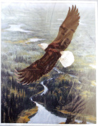 ColorArt Stitchery - WILDERNESS SPIRIT - 36cm X 48cm #00644