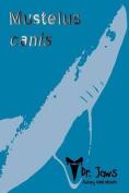 Mustelus Canis