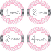 Little LillyBug Designs - Monthly Baby Stickers - Pink and Grey Damask - 1-12 Months