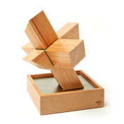Tegu Asterisk Magnetic Wooden Block Set