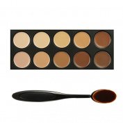 DiChi 10 Colour Professional Blemish Cream Concealer Makeup Palette With Toothbrush Curve Liquid Foundation Blending Brush
