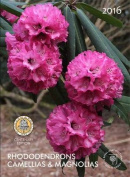 Rhododendrons Camellias & Magnolias