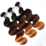 Wigshow Body Wave Omber Brazilian Virgin Human Hair Weave 3 Bundles Double Weft 1b 4 27 Extensions