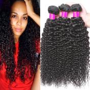 Belinda Hair Brazilian Curly Hair Weave Human Hair Bundles, Grade 7A Unprocessed Virgin Hair 3 Bundles Brazilian Wavy Hair Weave Natural Colour