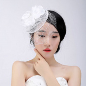 BININBOX Brides Fascinator Pearl Birdcage Veil Headpiece Wedding Formal Party Top Hat