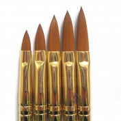 Mintbon 5pcs Acrylic Nail Art UV Gel Carving Pen Brush Liquid Powder DIY No. 2/4/6/8/10