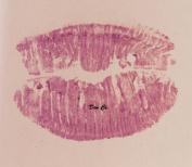 Solid Fuchsia Pink Tone Lip Gloss Polish 5ml Lippie Pot Matte Semi-Solid Tint Wand Brush
