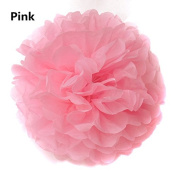 iMeshbean®10pcs Tissue Paper Pom-poms Flower Ball Wedding Party Outdoor Decoration