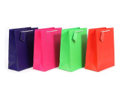 4CT Everyday Gift Bag with Sturdy Handle 4 Assorted Colours
