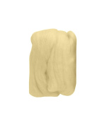 Trimits FW10.325 | Pistachio Natural Wool Roving | 10g Bag