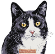 Black and white cat (V2) counted cross stitch kit