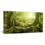 """Designart PT6998-100cm - 80cm Green Forest with Sun Landscape Photo"""" Canvas Print, Green, 100cm x 80cm"""