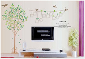 Fresh Green Tree, Tree of Life Memory Tree with Photo Frames Wall Decal