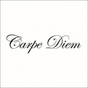 "WallDecalArt ""Carpe Diem"" Quote Saying Vinyl Wall Decal Wall Sticker"