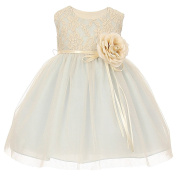 Baby Girls Blue Two Tone Lace Satin Sash Corsage Tulle Flower Girl Dress 6-24M