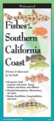 Fishes of Southern California Coast